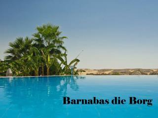 Barnabas die Borg