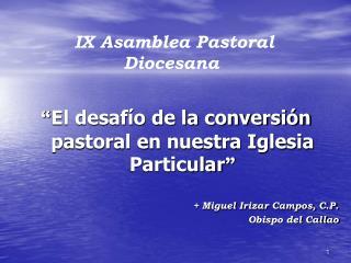 El desaf o de la conversi n pastoral en nuestra Iglesia Particular
