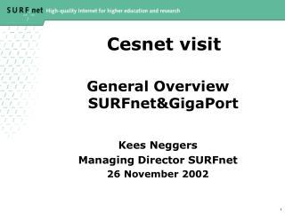 Cesnet visit
