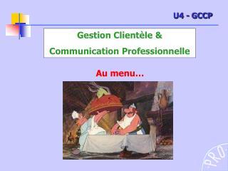Gestion Clientèle & Communication Professionnelle