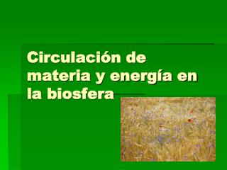 Circulación de materia y energía en la biosfera