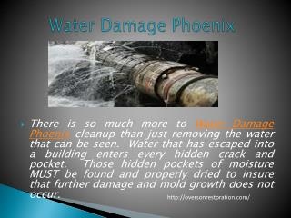 Water Damage Phoenix