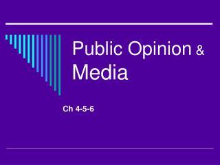 Public Opinion  & Media