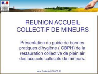 REUNION ACCUEIL COLLECTIF DE MINEURS