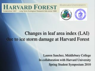 Changes in leaf area index (LAI)  due to ice storm damage at Harvard Forest