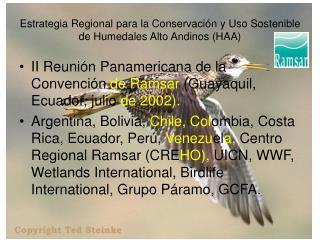 Estrategia Regional para la Conservación y Uso Sostenible de Humedales Alto Andinos (HAA)