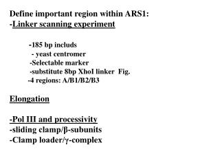 Define important region within ARS1: -Linker scanning experiment           -185 bp includs             - yeast centromer