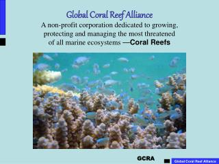 Coral Reefs �  Support, Nurture, Protect, Provide