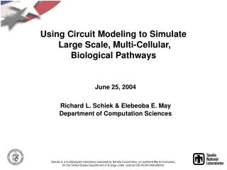 Using Circuit Modeling to Simulate  Large Scale, Multi-Cellular,  Biological Pathways