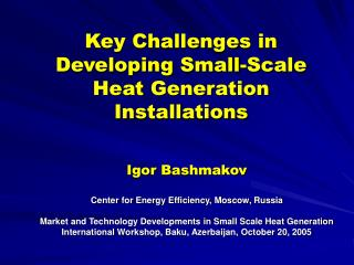 Key Challenges in Developing Small-Scale Heat Generation Installations