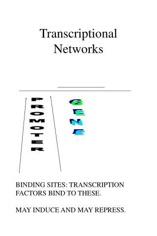 Transcriptional Networks