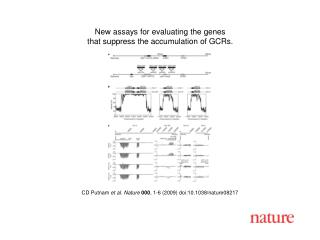 CD Putnam  et al. Nature 000 ,  1 - 6  (2009) doi:10.1038/nature08 217