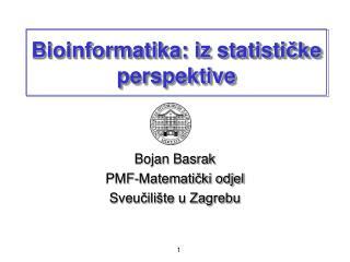 Bioinformatika: iz statisti čke perspektive