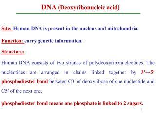 DNA ( Deoxyribonucleic acid )