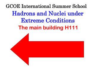GCOE International Summer School