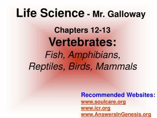 Chapters 12-13 Vertebrates: Fish, Amphibians, Reptiles, Birds, Mammals