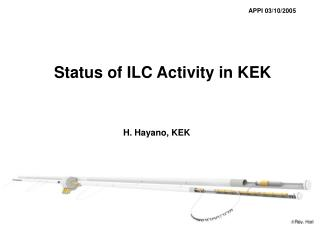 Status of ILC Activity in KEK