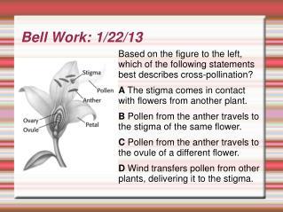 Bell Work: 1/22/13