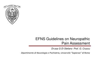 EFNS Guidelines on Neuropathic Pain Assessment