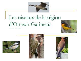 Les oiseaux de la région d'Ottawa-Gatineau Alain Michaud – La Cité collégiale
