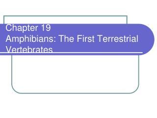 Chapter 19 Amphibians: The First Terrestrial Vertebrates
