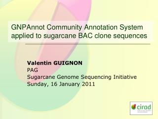 GNPAnnot Community Annotation System applied to sugarcane BAC clone sequences
