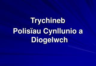 Trychineb Polis ïau Cynllunio a Diogelwch