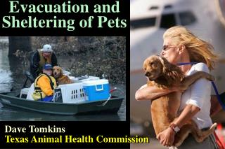 Evacuation and Sheltering of Pets
