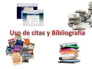 Uso de citas y  Bibliografía