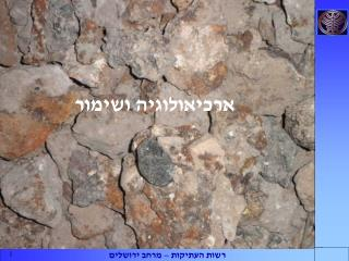 ארכיאולוגיה ושימור