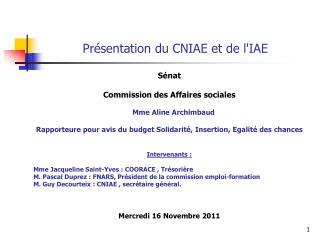 Présentation du CNIAE et de l'IAE