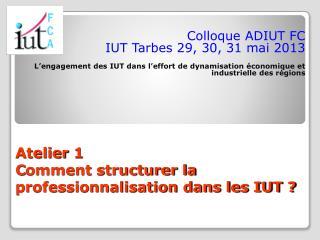Atelier 1 C omment structurer la professionnalisation dans les IUT ?