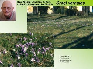 Klaus Adolphi, Universit�t zu K�ln, Institut f�r Biologie und ihre Didaktik