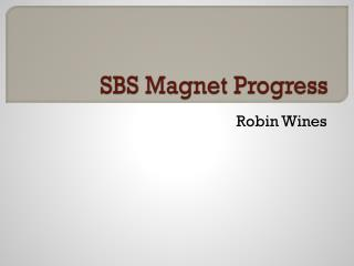 SBS Magnet Progress