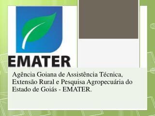 GERENCIA DE EXECUÇÃO ORÇAMENTAÇÃO E FINANCEIRA  - GEOF Gerente Gilmar Antônio Nicolau