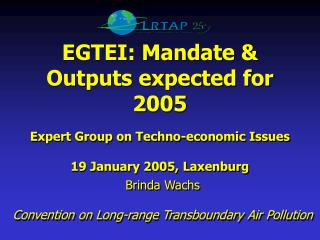 EGTEI: Mandate & Outputs expected for 2005 Expert Group on Techno-economic Issues