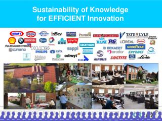 Sustainability of Knowledge for EFFICIENT Innovation