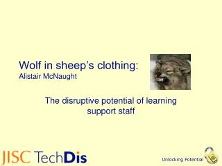 Wolf in sheep's clothing:  Alistair McNaught