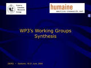 WP3's Working Groups Synthesis