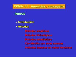 TEMA 11 : Avenidas, conceptos