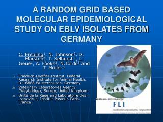A RANDOM GRID BASED MOLECULAR EPIDEMIOLOGICAL STUDY ON EBLV ISOLATES FROM GERMANY
