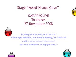 "Stage ""MesoNH sous Olive""  SWAPP/OLIVE Toulouse   27 Novembre 2008"