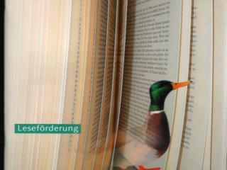 Leseförderung als Element von Schulentwicklung