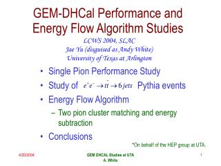 GEM-DHCal Performance and Energy Flow Algorithm Studies