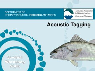 Acoustic Tagging