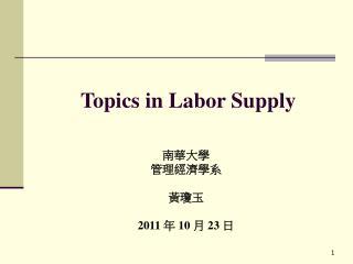 Topics in Labor Supply