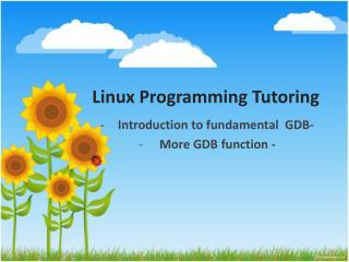 Linux Programming Tutoring