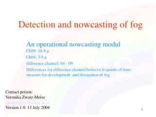 Detection and nowcasting of fog
