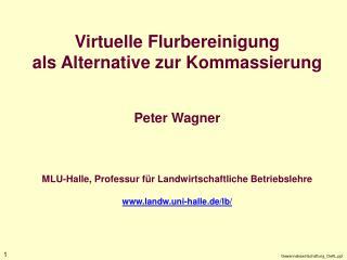 Virtuelle Flurbereinigung als Alternative zur Kommassierung   Peter Wagner    MLU-Halle, Professur f r Landwirtschaftlic