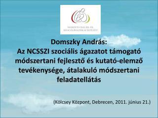 Domszky Andr s: Az NCSSZI szoci lis  gazatot t mogat  m dszertani fejleszto  s kutat -elemzo tev kenys ge,  talakul  m d